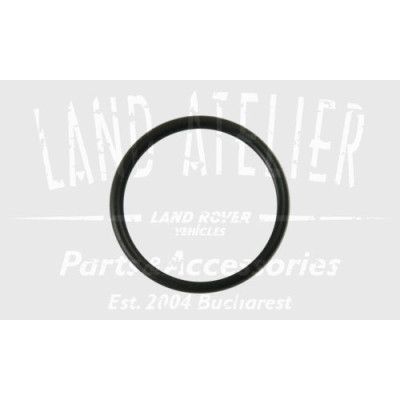Oring injector MYX000060 Land Rover Range Rover